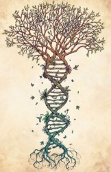 the-tree-of-life-